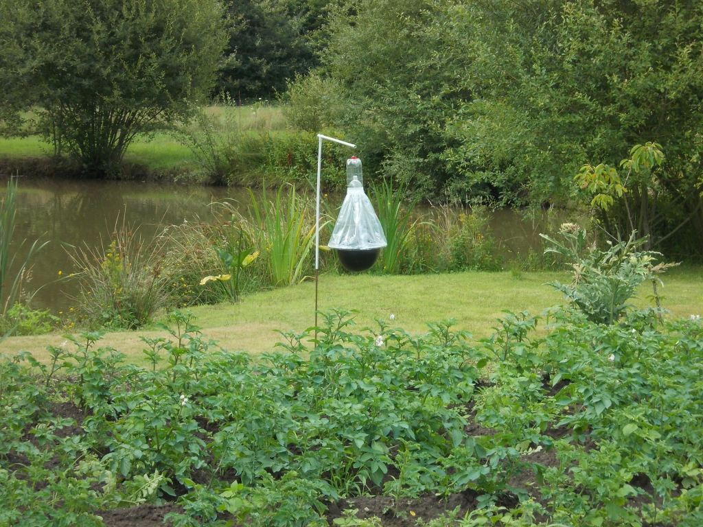 DIY Horsefly trap