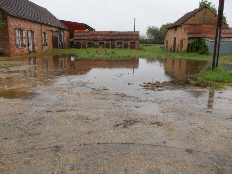 High tide at the farm